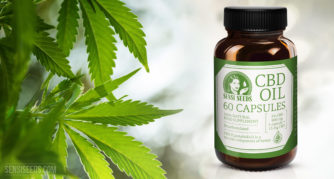 Productfoto van CBD-olie van Sensi Seeds. Een bruine fles met CBD-capsules staat op een wit vlak naast een cannabisplant. Naast het Sensi Seeds-logo staat in grote letters 'CBD Oil 60 Capsules'. Het kleurenschema is wit en groen. Onderaan de fles staat dat het product een 100% natuurlijk, gedecarboxyleerd voedingssupplement is, dat het gemiddelde gehalte CBD 3% is, 900 mg in totaal, en dat 1 capsule = 15 mg CBD.
