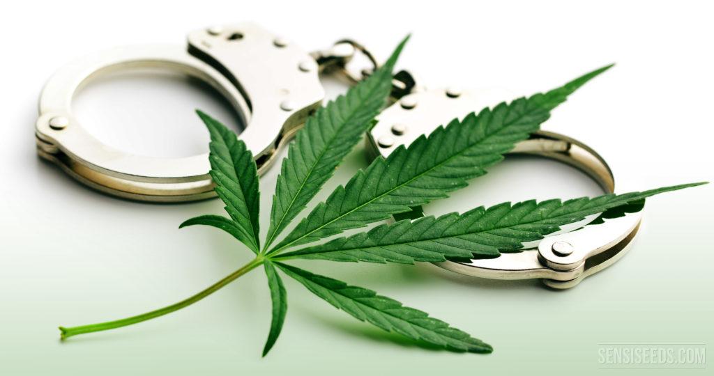 A cannabis leaf and a pair of handcuffs