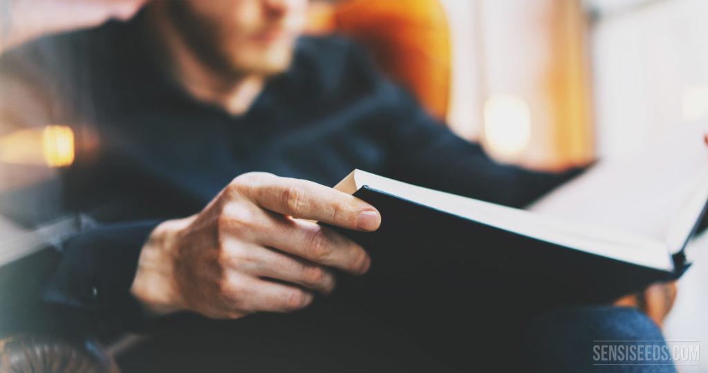 A hazy photograph of a person reading a non descript book.