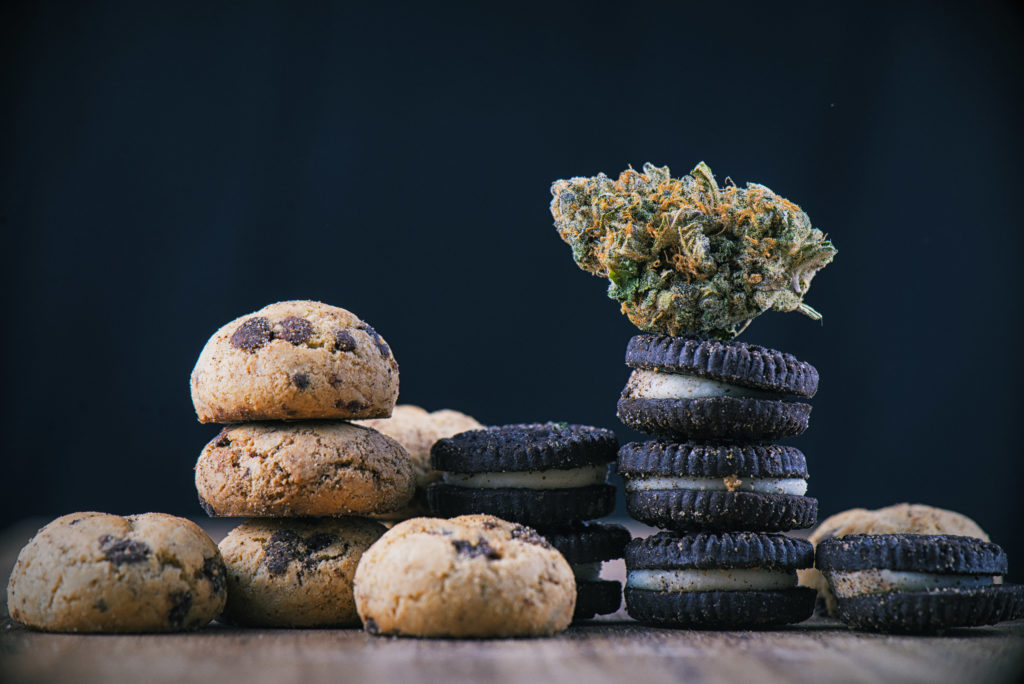 Una fotografía de un solo cogollo de cannabis colocado sobre unos chips de chocolate con infusión de cannabis y galletas de estilo Oreo.