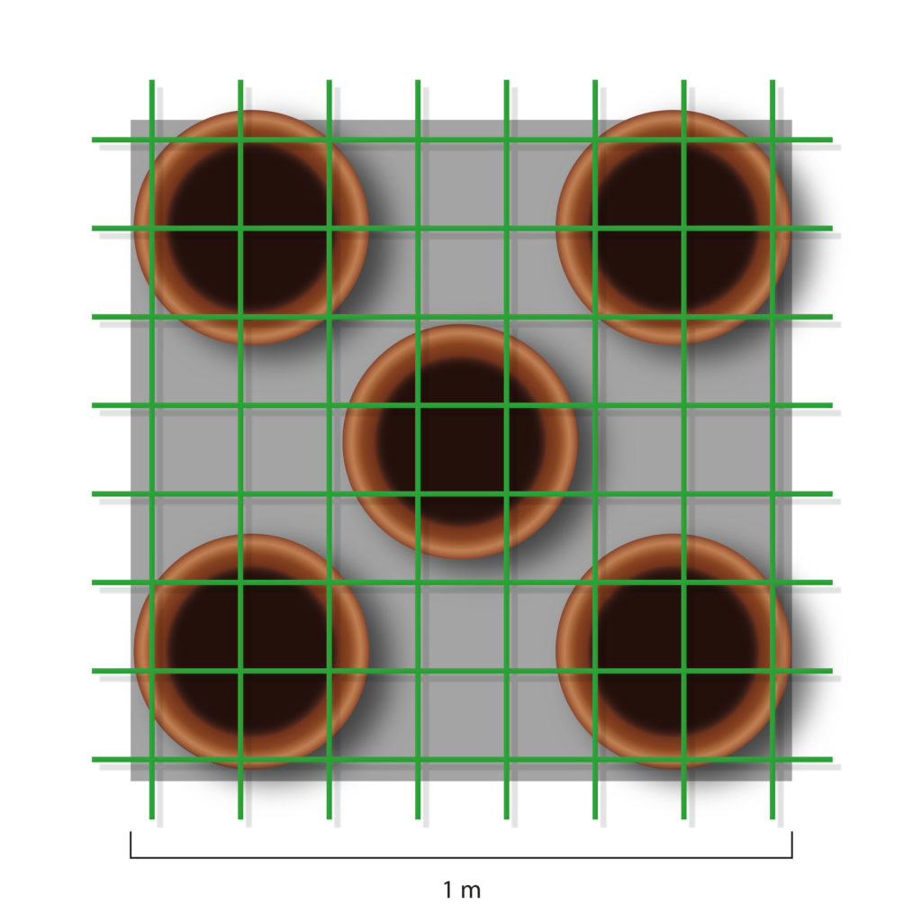 A illustrated graphic depicted in bird's eye view of 5 brown cannabis plant pots with a screen in green over the pots. A measurement scale written below the diagram shows 1 meter.