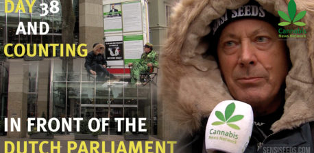 Hans Kamperman, fighting for the legalisation of cannabis - Sensi Seeds Blog
