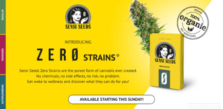 Introducing Sensi Seeds Zero Strains - Sensi Seeds Blog