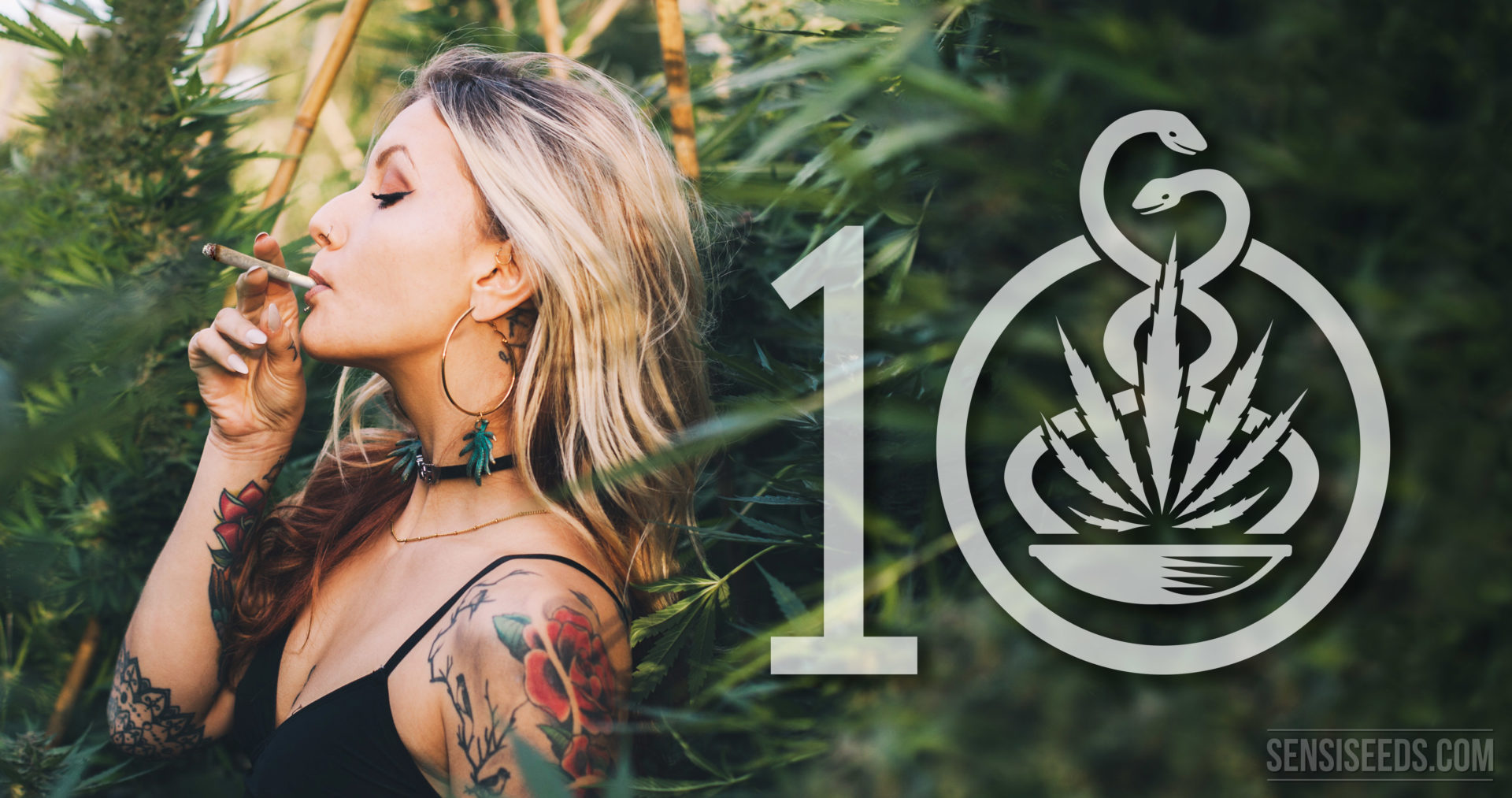 Cannabis-Raucher datieren richland wa dating