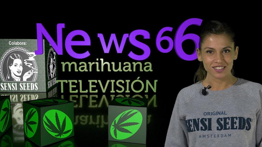 10 YouTube-kanalen over cannabis die je moet bekijken