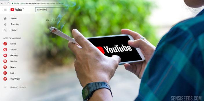 10 chaînes YouTube consacrées au cannabis à connaître