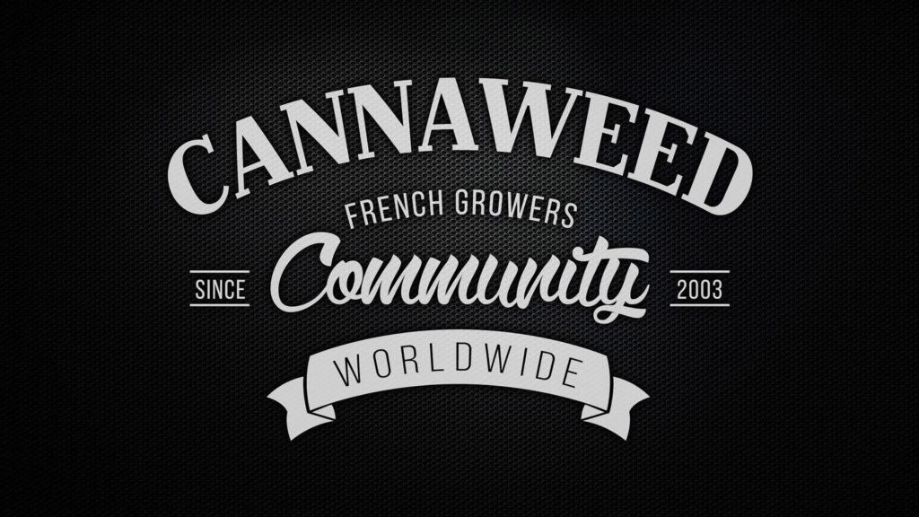 Se cierran los canales de YouTube relacionados con cannabis