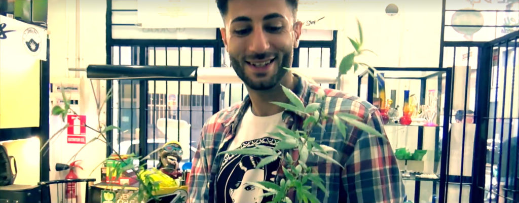 "A screenshot from the documentary film ""Mary & I"" showing Wally Johnson. He is shown standing, smiling, in front of a cannabis plant and is wearing a Sensi Seeds T-shirt."