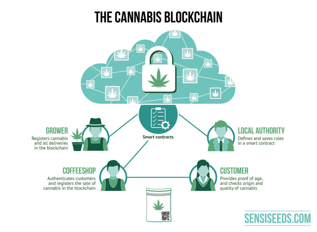 The graphic depicts the cannabis blockchain. The grower registers his cannabis and all deliveries. The coffee shop authenticates customers and registers the cannabis sale. The local authority defines and saves the rules of engagement. The customer provides proof of age and checks the origin and quality of the cannabis. Growers, the local authority and the coffee shop are connected via a smart contract.