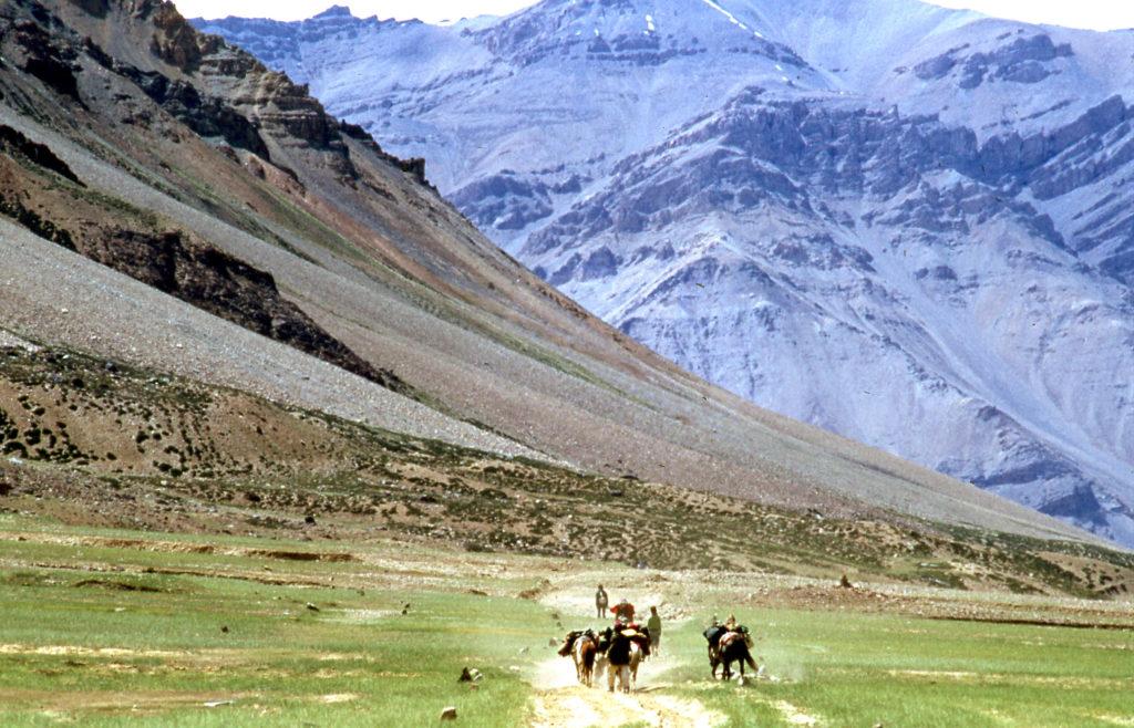 Foto auf dem Mila mit ihrem Guide Tashi und Pferden durch die raue Berglandschaft von Nordindien wandert. Im Vordergrund Menschen und Tiere inmitten einer grünen Steppe, im Hintergrund die schneebedeckten Berge des Himalayas. Das Foto wurde in der Region von Ladakh im Jahr 1976 aufgenommen.