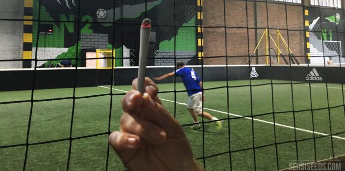 Op de foto staat een overdekt voetbalveld met een voetballer in blauwe kleding. Op de voorgrond is een zwart net te zien en een hand die een brandende joint vasthoudt. Rechts onderaan staat het logo van Sensi Seeds.