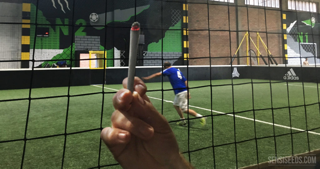 In the photograph is an indoor football pitch with a player dressed in blue. In the foreground is a black net and a hand holding a burning joint. At the bottom right is the Sensi Seeds logo.