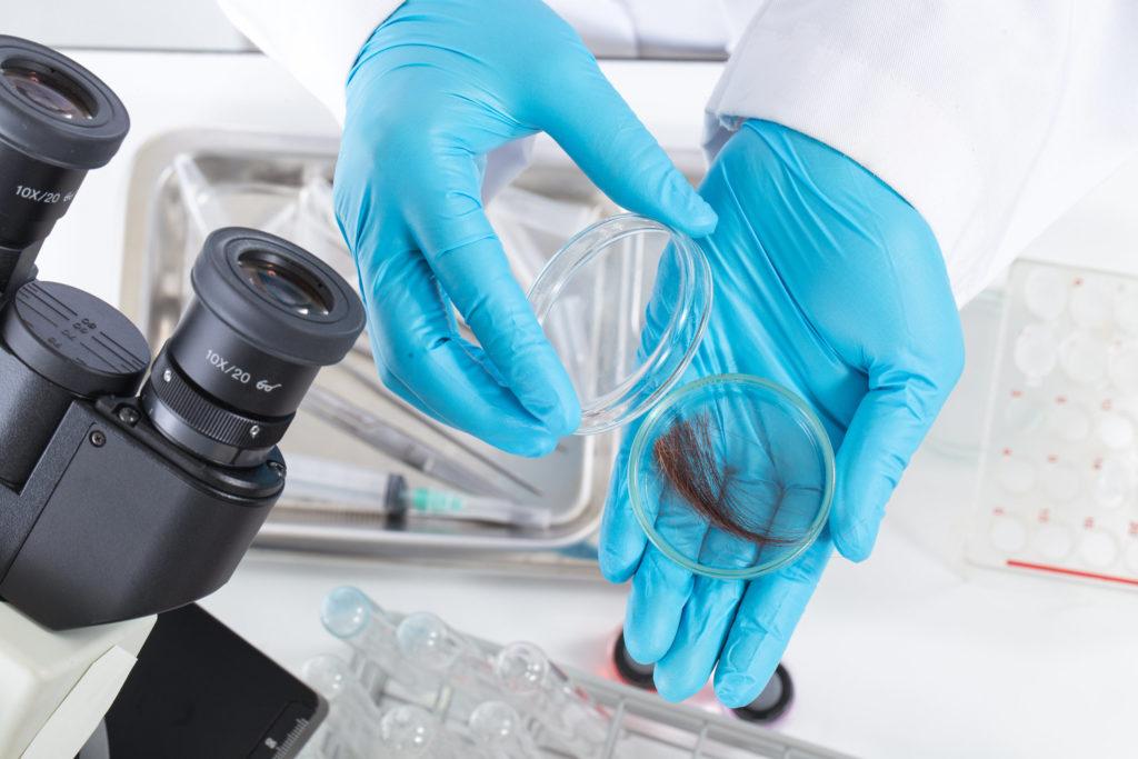 Foto gemaakt in een laboratorium, waarop een microscoop en twee handen gehuld in blauwe plastic handschoenen te zien zijn die een plukje haar in een doorzichtig bakje doen.