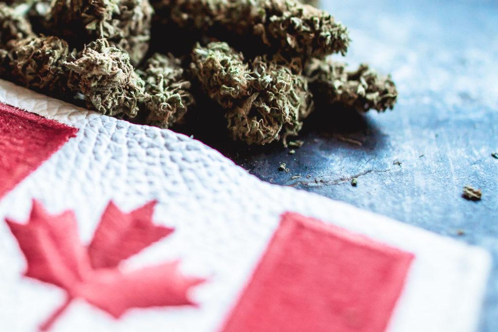 Hacer Frente a la Escasez de Cannabis en Canadá