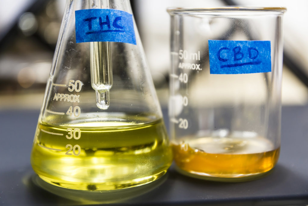 Deutliche Zunahme der Forschung zu medizinischem Cannabis