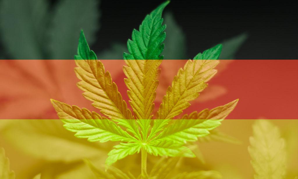 De bons profits ? Le cannabis médical comme produit d'exportation
