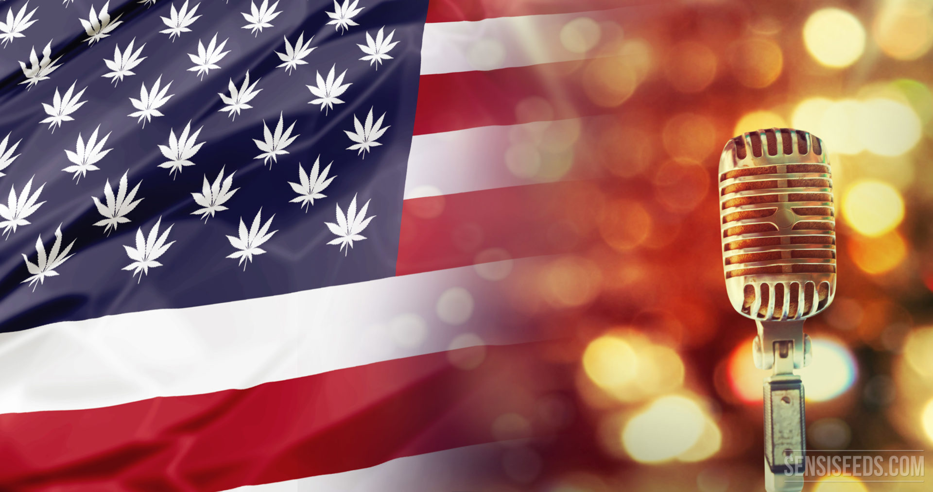 10 of the Top US Cannabis Movers and Shakers