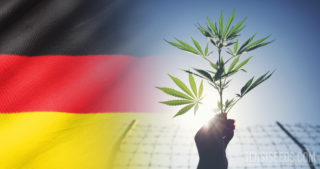 Legal Status of Cannabis in Germany - an overview of