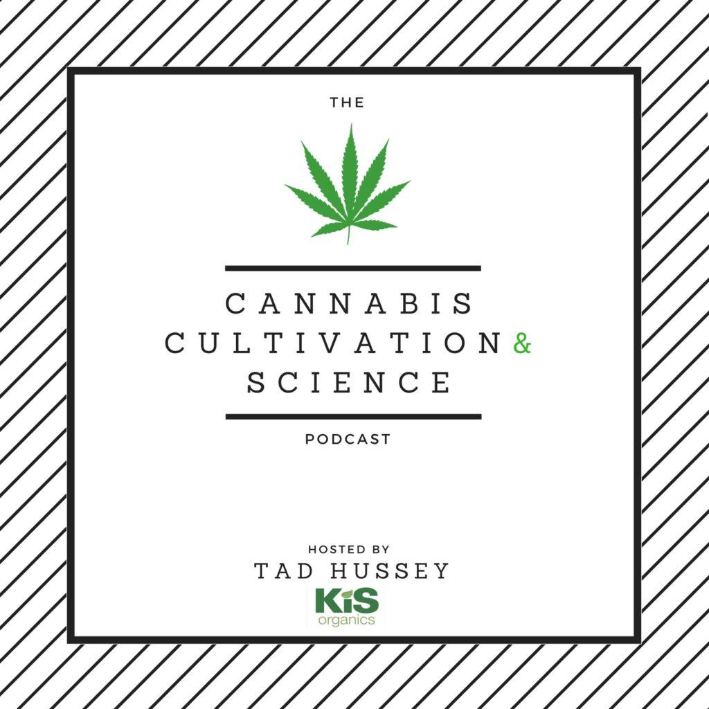 10 Podcasts geniales para Cannaconsumidores