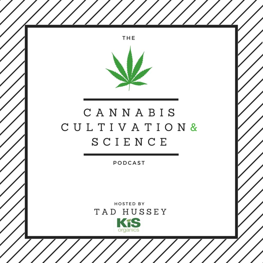10 Cool Podcasts for Stoners