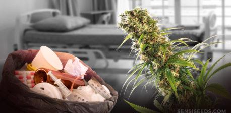 Een zak vol medische apparatuur in een ziekenhuiskamer en een cannabisplant
