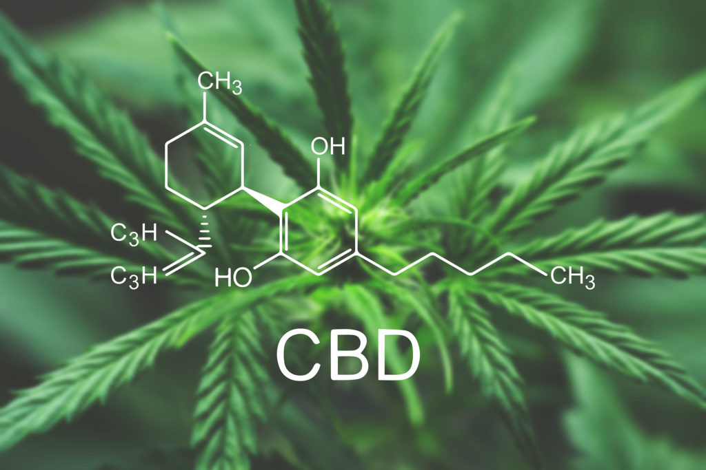La formule chimique de la CBD avec une plante de cannabis à l'arrière-plan