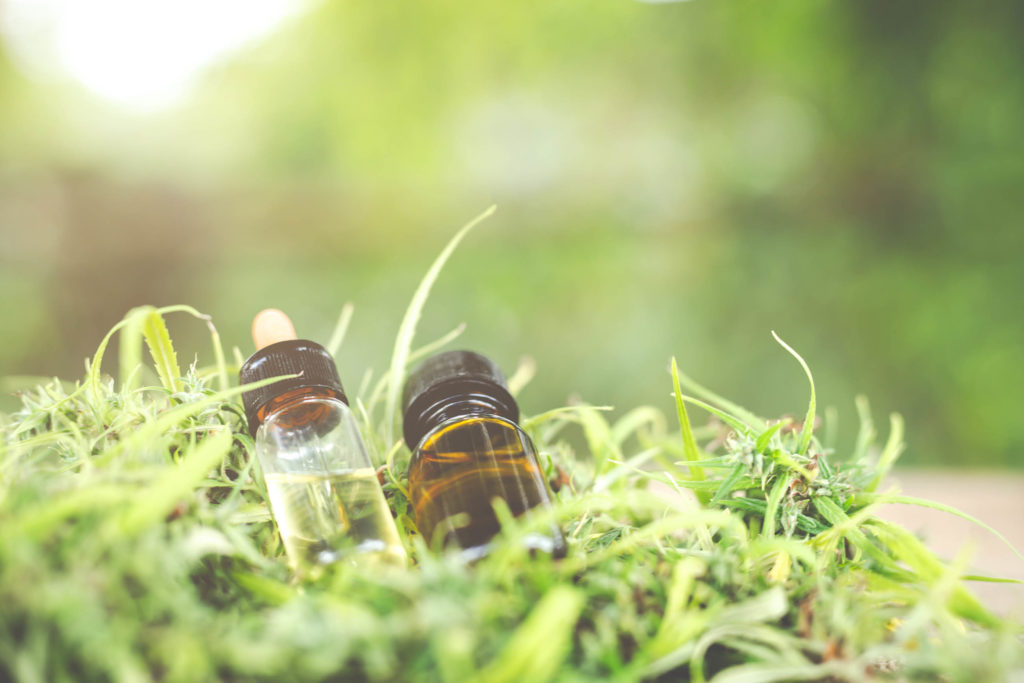 Zwei Glasgläser von CBD, die auf einer Cannabis-Pflanze ruhen