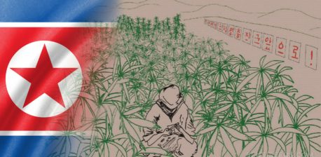 The North Korean flag and an illustration of a cannabis field