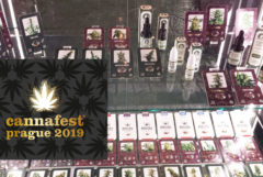 A glass display at Cannafest 2019