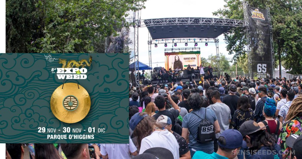 A concert and audience and Expoweed logo