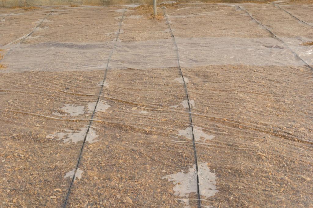 Een vel plastic dat een uitgestrektheid van de bodem bedekt