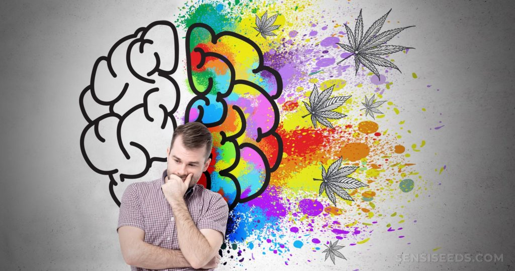 Illustration of grey left brain hemisphere and colorful right hemisphere with cannabis leafs, and a man in front with crossed hands thinking