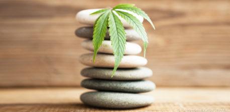 Une pile de cailloux gris avec une feuille de cannabis sur le dessus