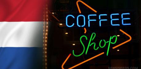 Die niederländische Flagge und ein Neon-Café-Schild