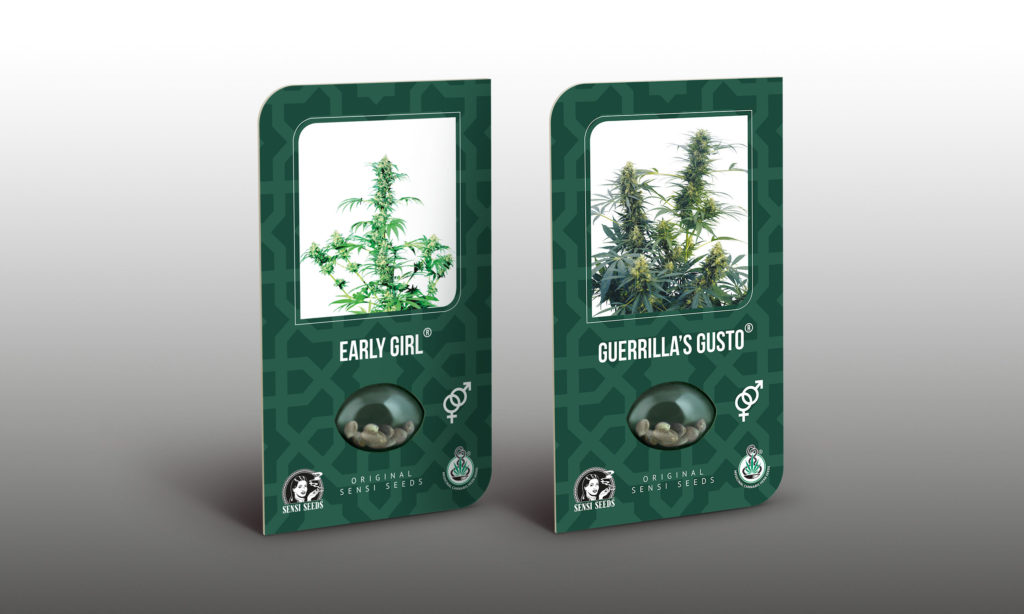 A great strain choice for those in temperate zones are Early Pearl and Guerrilla's Gusto.