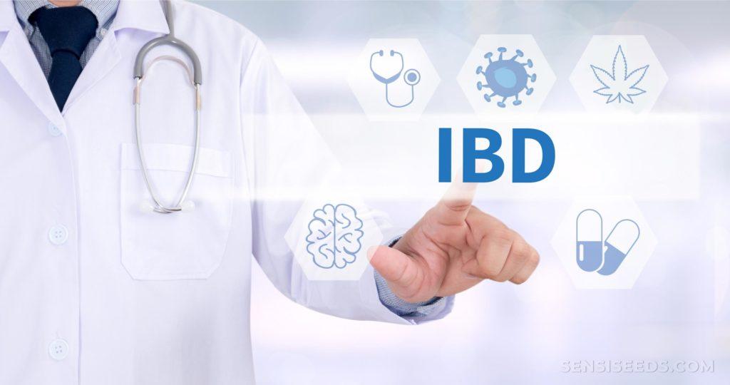 """Eine Person in einem weißen Mantel und ein Stethoskop, das auf schriftlich """"IBD"""" klicken"""