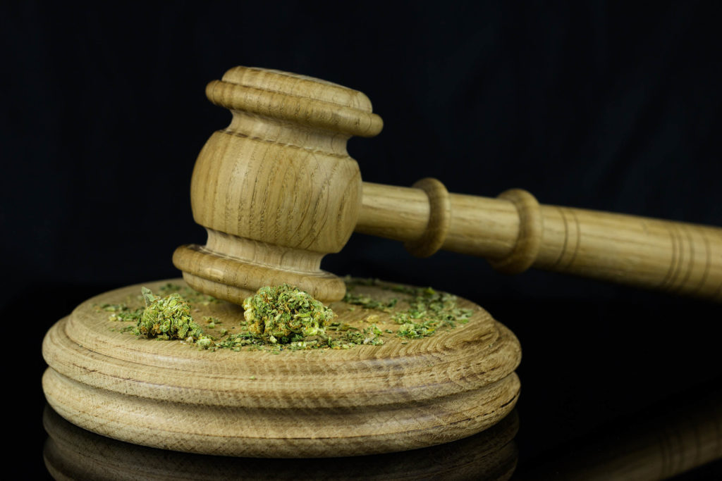 A wooden gavel with cannabis on it