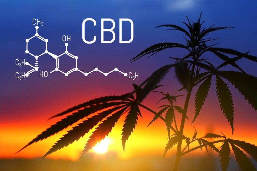 La formule chimique pour la CBD et une plante de cannabis contre un coucher de soleil