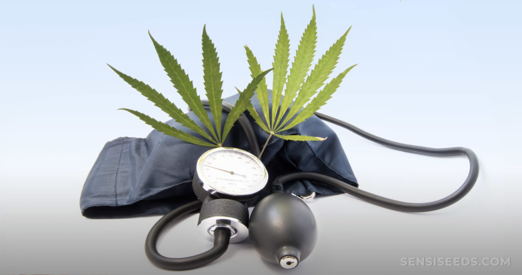 A blood pressure monitor and two cannabis leaves