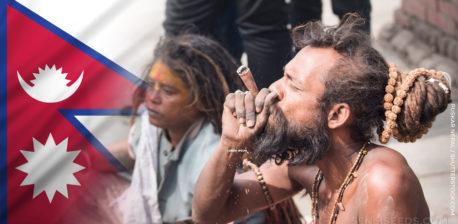 Die nepalesische Flagge und ein topless Mann mit einem Bart, der ein Gelenk raucht