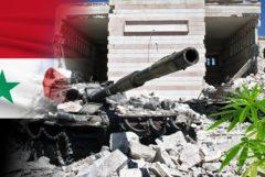 La bandera siria y un tanque que conduce sobre los escombros y una planta de cannabis.