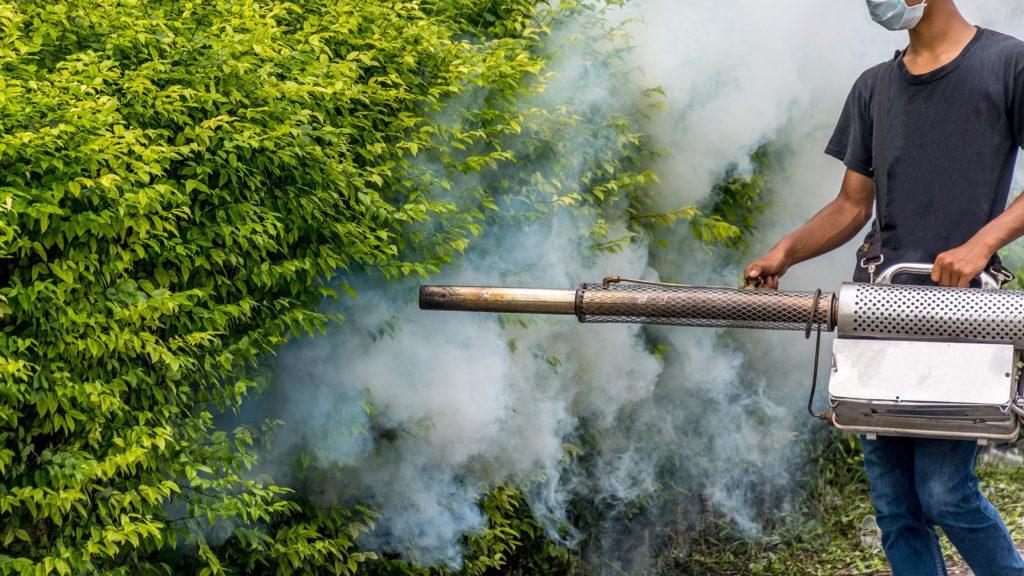Een man spuiten insecticiden op een struik