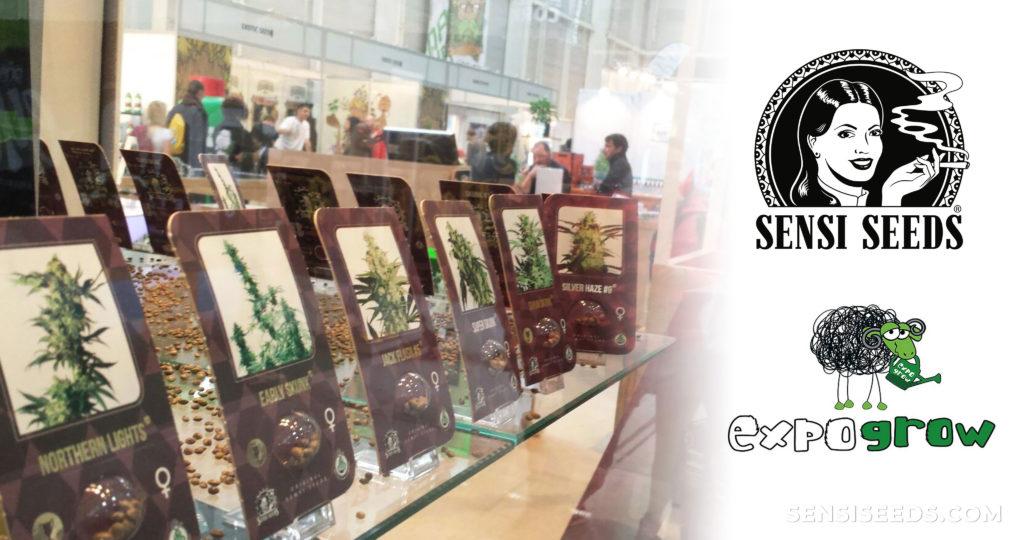 Un affichage avec des produits de cannabis à l'Expogrow