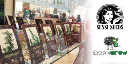 Eine Anzeige mit Cannabis-Produkten beim Expogren