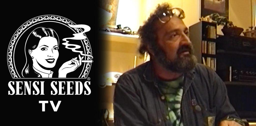 Le logo Sensi Seeds et un toujours d'une interview avec Jack Herer
