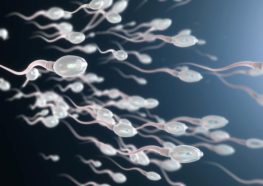 Une illustration animée de sperme sur le fond bleu