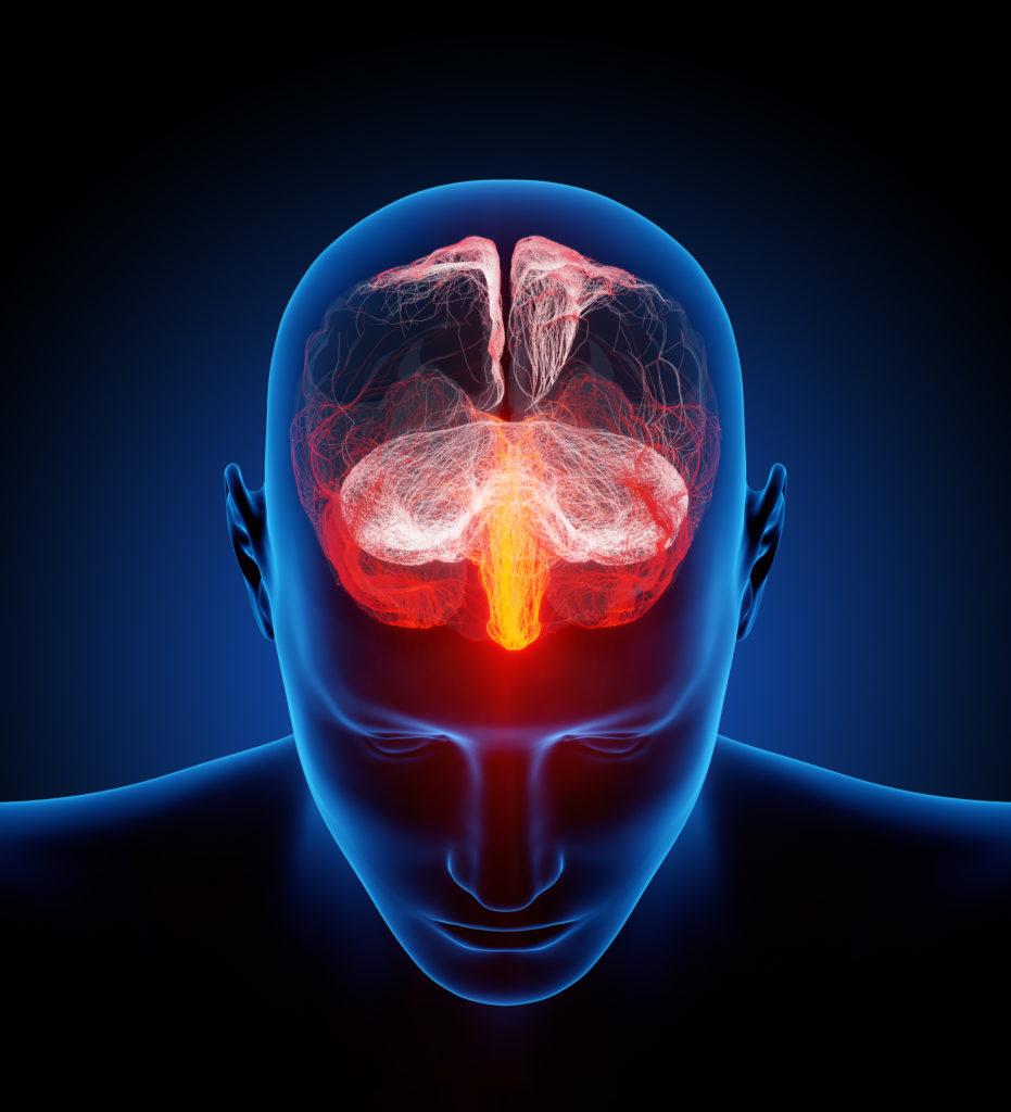 Un cerveau souligné en blanc, rouge et jaune dans la tête d'un homme