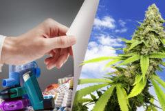 Een stapel inhalers naast een cannabisplant