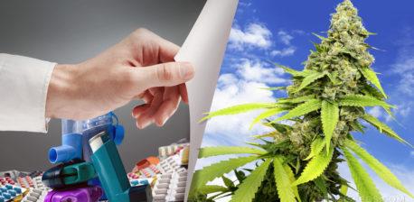 Ein Stapel Inhalatoren neben einer Cannabis-Pflanze