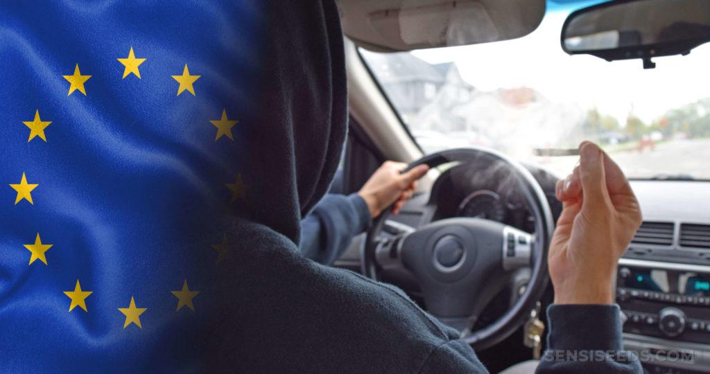 A European flag and a person driving a car